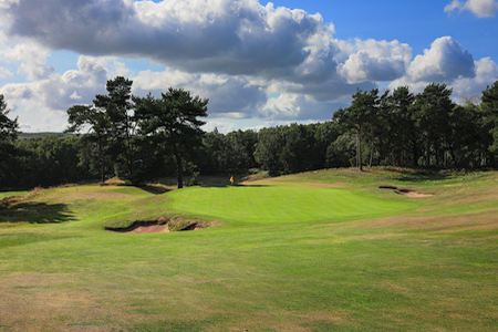 Delamere Forest Golf Club hole 8